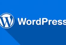 WordPress文章内容输入微信公众号验证码可见 可自定义